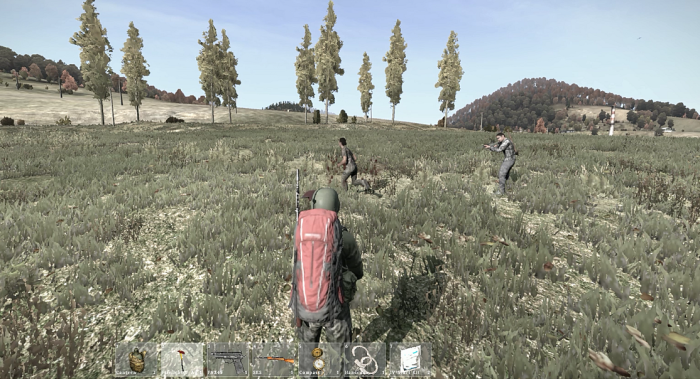 DayZ Glitched out